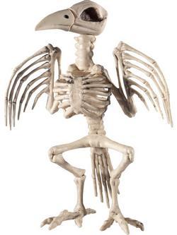 Holló Csontváz Dekoráció