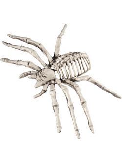 Pók Csontváz Halloween Dekoráció