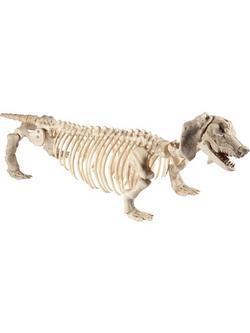Tacskó Csontváz Dekoráció